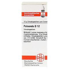 PALOONDO D 12 Globuli 10 Gramm N1 - Vorderseite