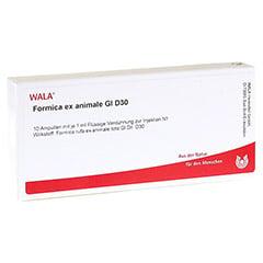 FORMICA EX animale GL D 30 Ampullen 10x1 Milliliter N1