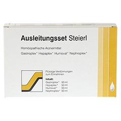 AUSLEITUNGSSET Steierl Tropfen 4x50 Milliliter N1 - Vorderseite