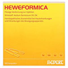 HEWEFORMICA Ampullen 100 Stück N3 - Vorderseite