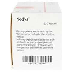 NODYS Kapseln 120 Stück - Rechte Seite