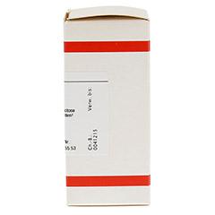 SANGUINARIA D 30 Tabletten 80 Stück - Rechte Seite