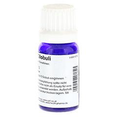 HCG C30 Gall Globuli 10 Gramm - Rückseite