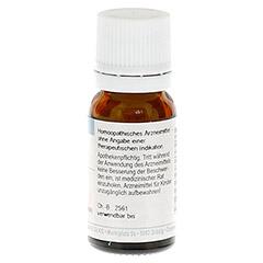RHUS TOXICODENDRON D 12 Globuli 10 Gramm N1 - Rückseite