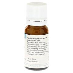 LYCOPODIUM CLAVATUM C 30 Globuli 10 Gramm - Rückseite