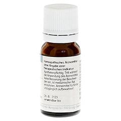 RHUS TOXICODENDRON D 30 Globuli 10 Gramm - Rückseite