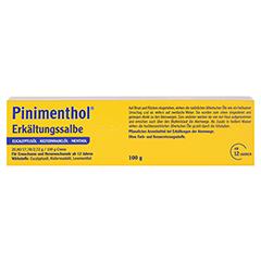 Pinimenthol Erkältungssalbe 100 Gramm N3 - Rückseite