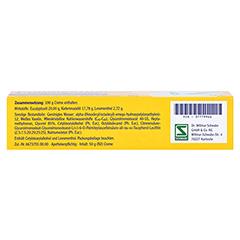 Pinimenthol Erkältungssalbe 50 Gramm N2 - Unterseite