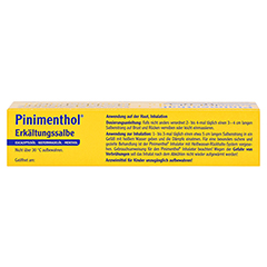 Pinimenthol Erkältungssalbe 50 Gramm N2 - Oberseite