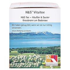 H&S heißer Sanddorn Vitaltee Filterbeutel 20 Stück - Rechte Seite