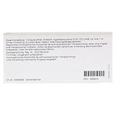 HYPOTHALAMUS GL D 12 Ampullen 10x1 Milliliter N1 - Rückseite