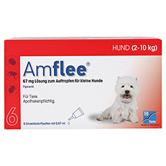 AMFLEE 67 mg Spot-on Lsg.f.kleine Hunde 2-10kg 6 Stück - Vorderseite