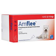AMFLEE 67 mg Spot-on Lsg.f.kleine Hunde 2-10kg 6 Stück