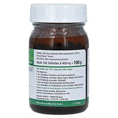 SPIRUZINK Zink Spirulina Nahrungserg. Tabletten 250 St�ck - Linke Seite