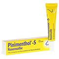PINIMENTHOL S Nasensalbe 10 Gramm
