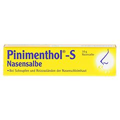 PINIMENTHOL S Nasensalbe 10 Gramm - Vorderseite