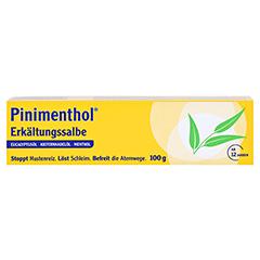 Pinimenthol Erkältungssalbe 100 Gramm N3 - Vorderseite