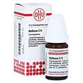 AETHUSA C 6 Globuli 10 Gramm N1