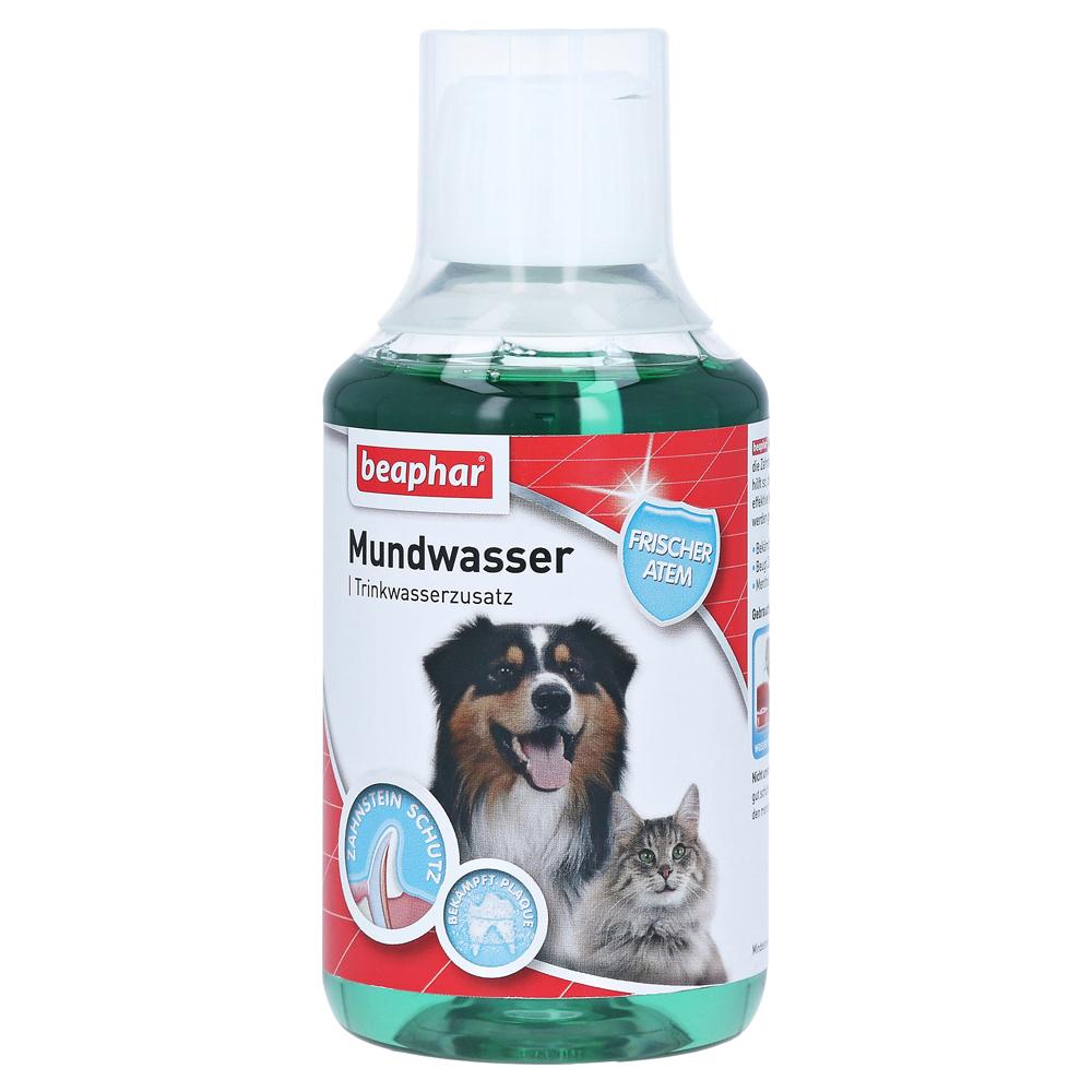 beaphar-mundwasser-f-hunde-katzen-0-25-liter