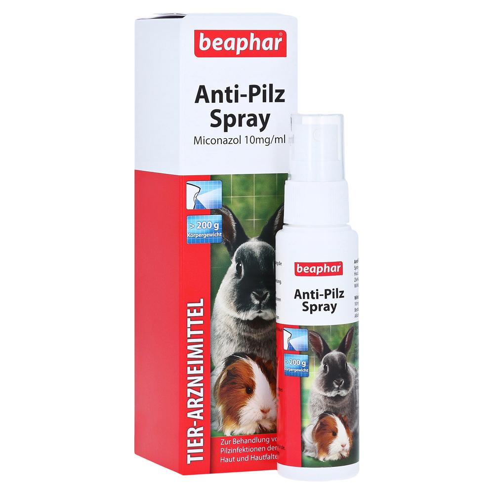 beaphar-anti-pilz-spray-f-kleinnager-zierkaninchen-50-milliliter