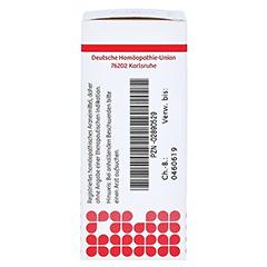 HYPERICUM D 6 Globuli 10 Gramm N1 - Linke Seite