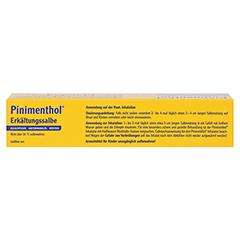 Pinimenthol Erkältungssalbe 100 Gramm N3 - Oberseite