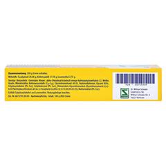 Pinimenthol Erkältungssalbe 100 Gramm N3 - Unterseite