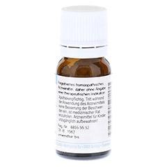 HYPERICUM PERFORATUM D 12 Globuli 10 Gramm - Rückseite