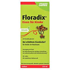 Floradix Eisen für Kinder Tonikum 250 Milliliter - Vorderseite
