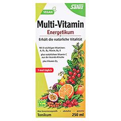 Multi-vitamin Energetikum Salus 250 Milliliter - Vorderseite