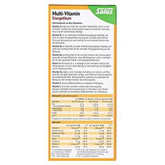 Multi-vitamin Energetikum Salus 250 Milliliter - Rückseite