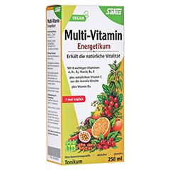 Multi-vitamin Energetikum Salus 250 Milliliter