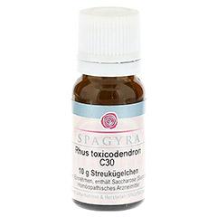 RHUS TOXICODENDRON C 30 Globuli 10 Gramm N1
