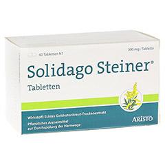 Solidago Steiner 60 Stück N1