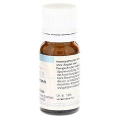 CAUSTICUM HAHNEMANNI C 30 Globuli 10 Gramm N1 - Linke Seite