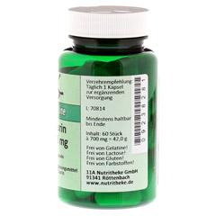 TAURIN 500 mg Kapseln 60 Stück - Rechte Seite