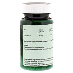 Q10 30 mg Kapseln 90 Stück - Rückseite