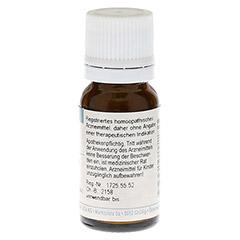 GELSEMIUM SEMPERVIRENS D 6 Globuli 10 Gramm - Rückseite