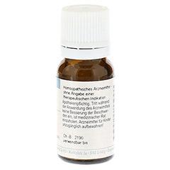 RHUS TOXICODENDRON C 30 Globuli 10 Gramm - Rückseite