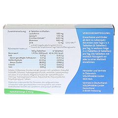 SANFERIN Tabletten 80 Stück - Rückseite