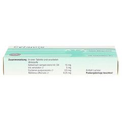 CEFAMIG Tabletten 20 Stück N1 - Unterseite