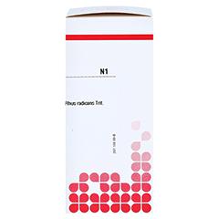 RHUS RADICANS D 4 Tabletten 80 Stück N1 - Rechte Seite
