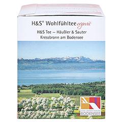 H&S Cranberry Acerolakirsche Filterbeutel 20 Stück - Rechte Seite