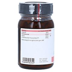 Pycnogenol Pinienrindenextrakt 120 Stück - Rechte Seite