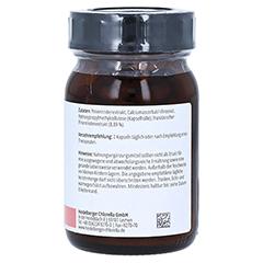Pycnogenol Pinienrindenextrakt 120 Stück - Linke Seite