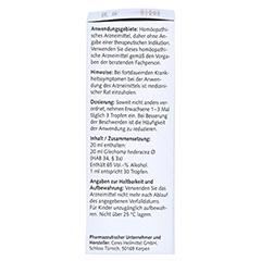 CERES Glechoma hederacea Urtinktur 20 Milliliter N1 - Rechte Seite