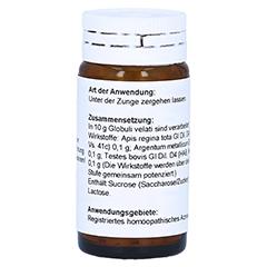 TESTES COMP.Globuli 20 Gramm N1 - Rückseite
