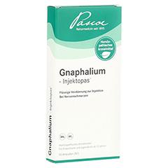 GNAPHALIUM INJEKTOPAS Ampullen 10 Stück N1