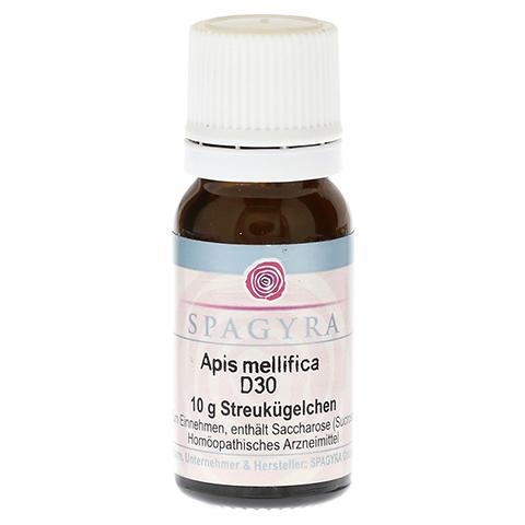 APIS MELLIFICA D 30 Globuli 10 Gramm