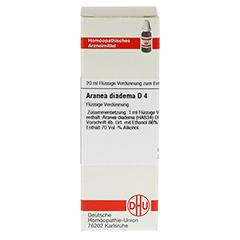 ARANEA DIADEMA D 4 Dilution 20 Milliliter N1 - Vorderseite